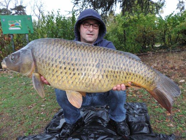 poissons d automne