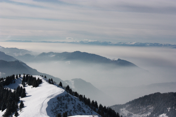 En haut des cimes. Fin février 2011, Canon 450D+ 18-55