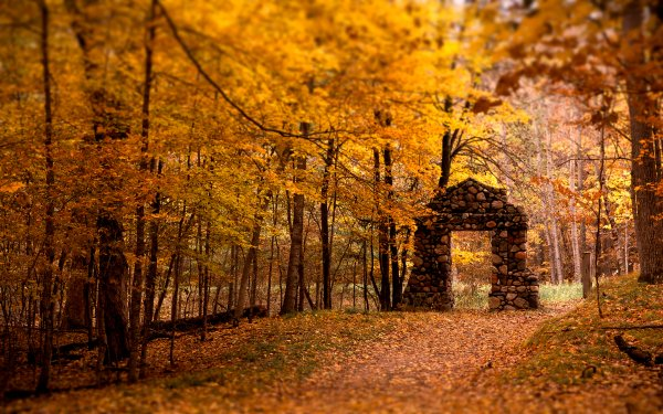 Quelqu'un meurt, Et c'est comme une porte Qui claque. Mais si c'était un passage S'ouvrant sur d'autres paysages...