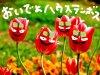 kidd: tete de tulipe!