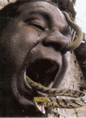 Une langue de serpent hallucinant - Piege a serpent ...