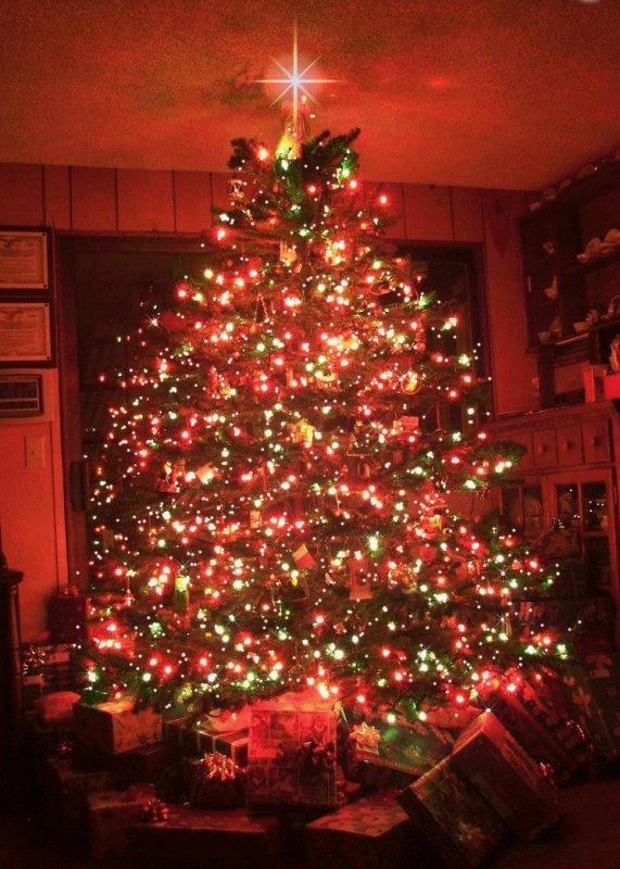 <3<3<3 Ma bûche de NoËL et ma galette des rois, Joyeuses fêtes ;-)