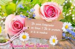 Bonne ST Valentin mes Amis(es)