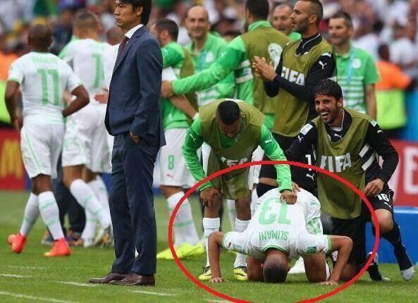 vive l'algeri