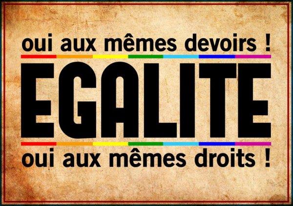 L'égalité Pour Tous !!!