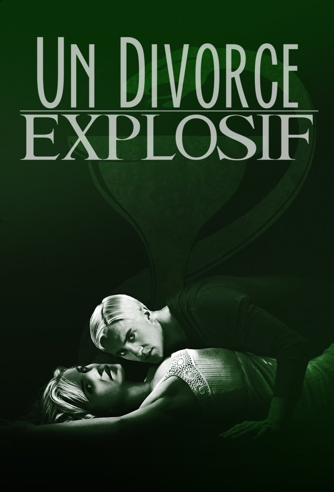 Un Divorce Explosif