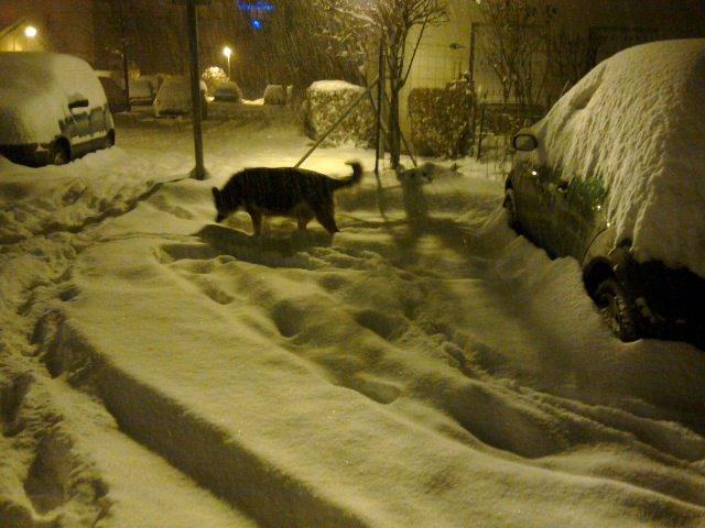 La neige est arrivée ......
