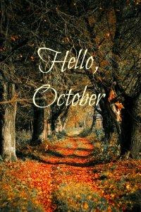 ~ L'automne, Le temps des rêveurs.