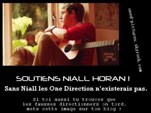 Soutient Niall Horan <3