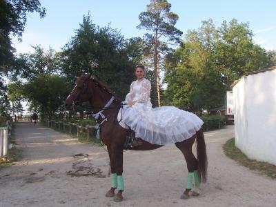 centre equestre manou