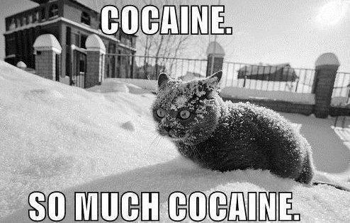 Vous pendrez bien un peu de DROGUE !!!