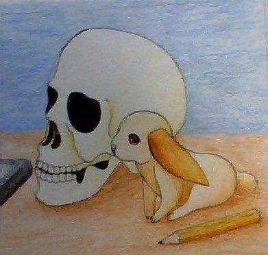 Crâne + Lapin = moi