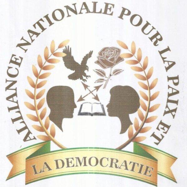 representation de l'ANAPADE comme un parti de la reforme