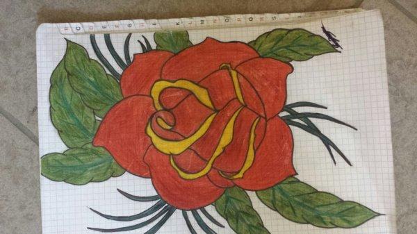 Première rose