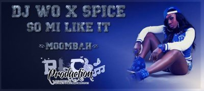 DJ WO X SPICE - SO MI LIKE IT (MOOMBAH) -EXCLUS PLC 2014 ! (2014)