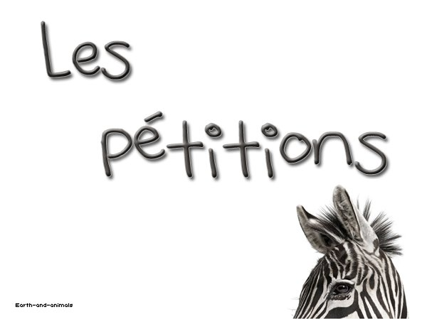ARTICLE o2. ___ Pétitions