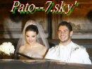 Photo de Pato--7
