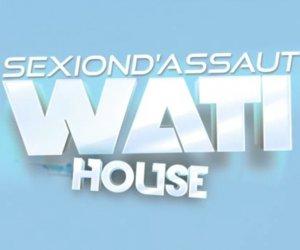 L'Apogée / SEXION D'ASSAUT - WATI HOUSE - L'APOGEE DANS LES BACS (2012)