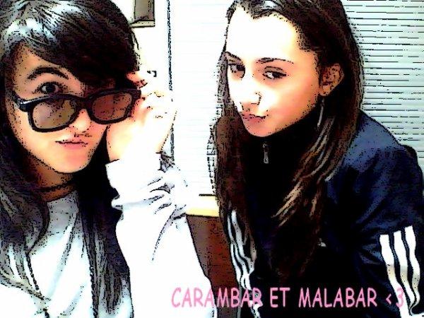 MALABAR  && CARAMBAR  ...