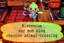 Photo de Chococo-Animal-Crossing