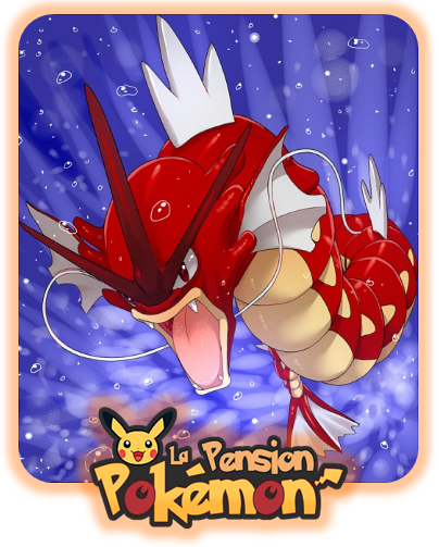 ★★ La PokéPension # 14 # Leviator ! ★★
