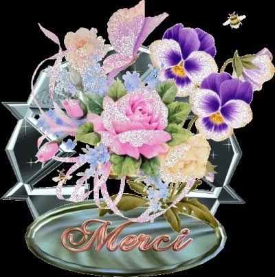 Et , pour vos 6860 superbes et jolis et agréables com's ; un immense et humble .......................................