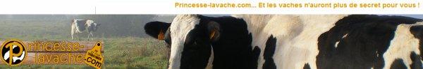 Princesse-lavache.com
