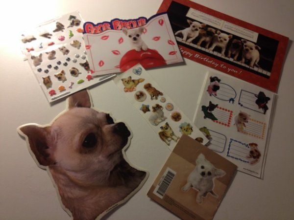 Stickers et cartes postales chihuahua