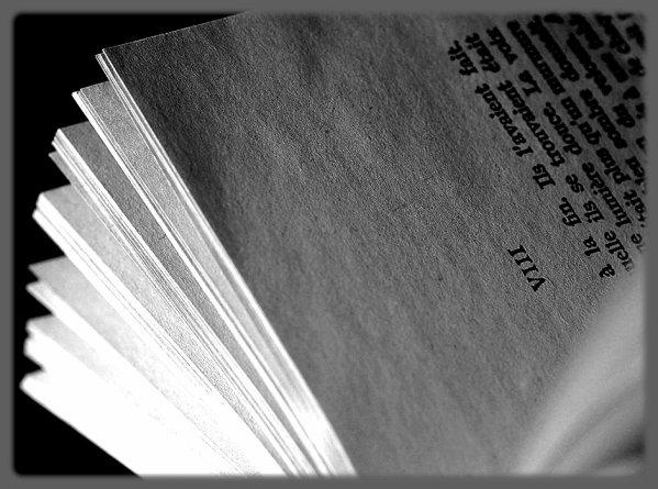 Les livres peuvent se diviser en deux groupes : les livres du moment et les livres de toujours.