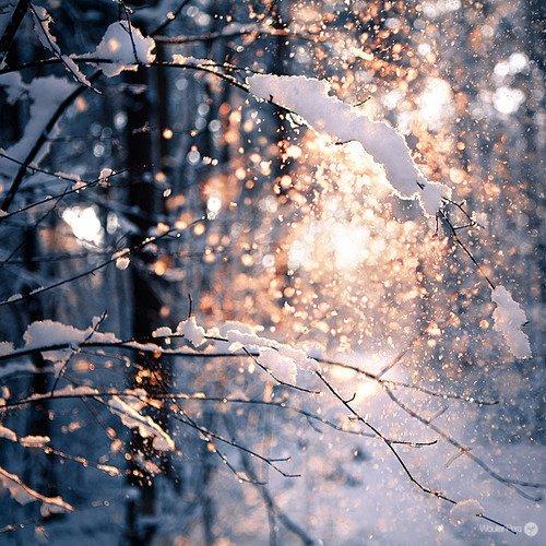 Décembre - Janvier Chéris