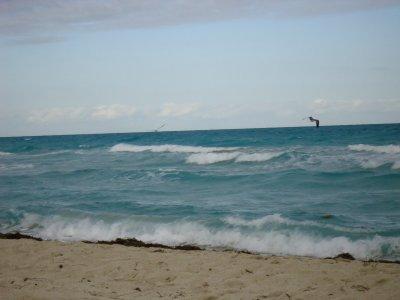 Entre cette longue pèriode de froid Petit Break de 2 Semaine en Amérique ;) Miami ! <3