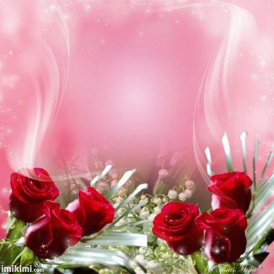 comme t'es ma lumier comme cette rose je serai toujours tranquil dans ma vie