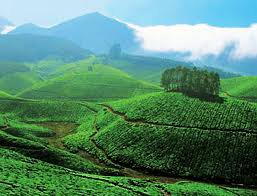 Kerala Tourism – Splendid and Beyond Words to Describe