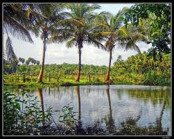 Kerala Tourism - Most Astounding Places to Visit in this Wonderland