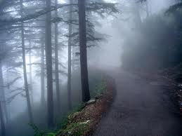 Himachal Pradesh – Incredible Holidaying Destination of North India