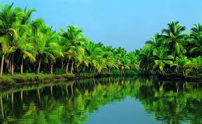 Kerala the Land of Amusing Attractions and Sightseeing Spots