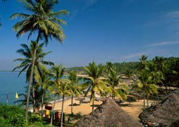 Kerala and Its Amazing Tourist Destinations and Attractions