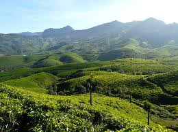 Munnar the Evergreen Hill Station of Kerala