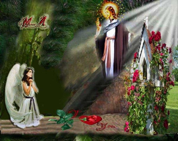 """*  """"Chi segue il Signore avrà la luce della vita"""" ***"""