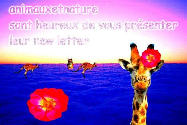 la new letter