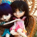 Photo de Crisppullip