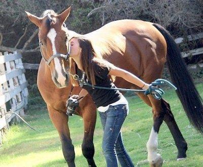 Ma deuxieme passion... Les chevaux ♥