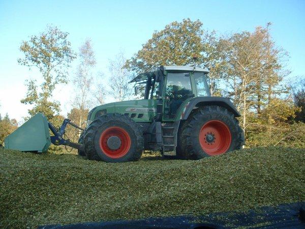 Ensilage maïs 2008