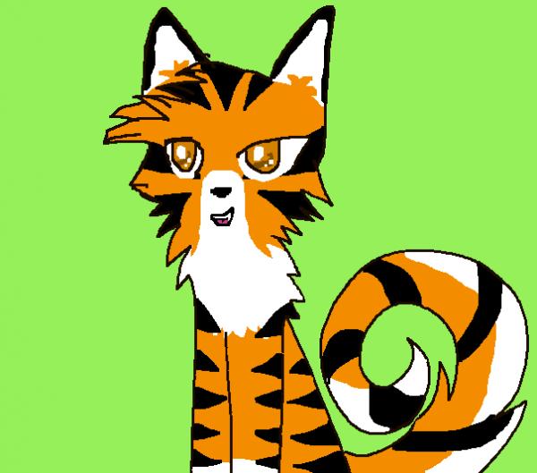 Tigre - Pelage de Tigre