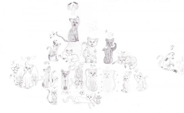 Clan du Clair de Lune AntreDuDragon
