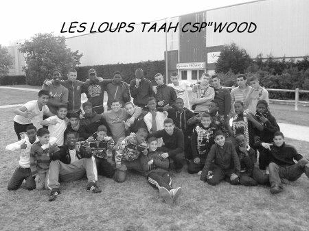 """LES L0UPS TAAH CSP""""WOOD !!"""