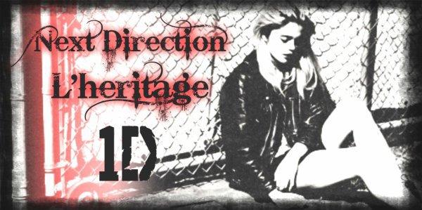 Fiction Next Direction, l'héritage 1D