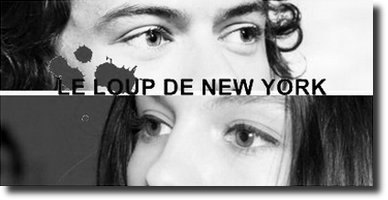 Fiction Le Loup De New York