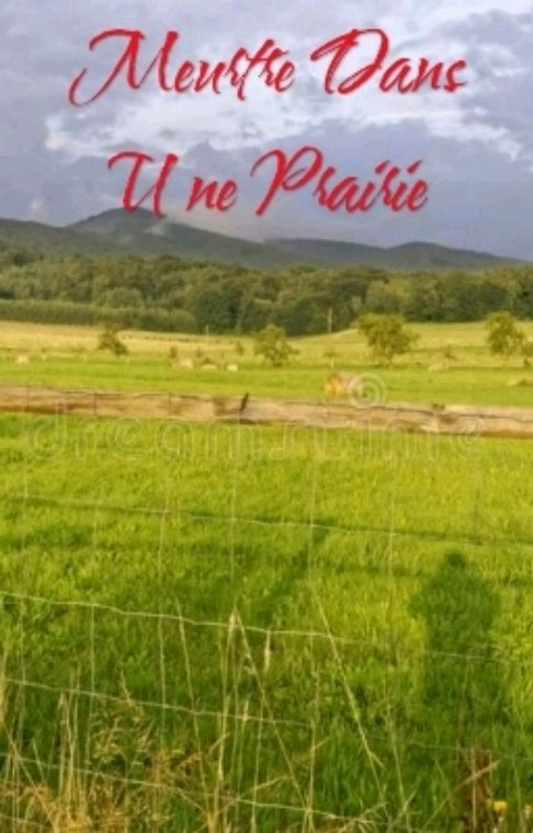 Meurtre Dans Une Prairie : Épilogue