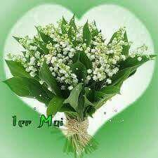 Fête 1 mai jolie fleurs muguet